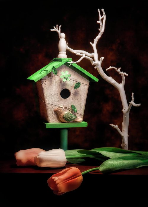 Birdhouse Greeting Card featuring the photograph Birdhouse With Tulips by Tom Mc Nemar