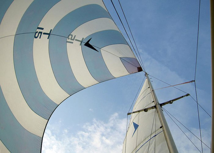 Tranquility Greeting Card featuring the photograph Blue And White Spinnaker by Laura A. Watt