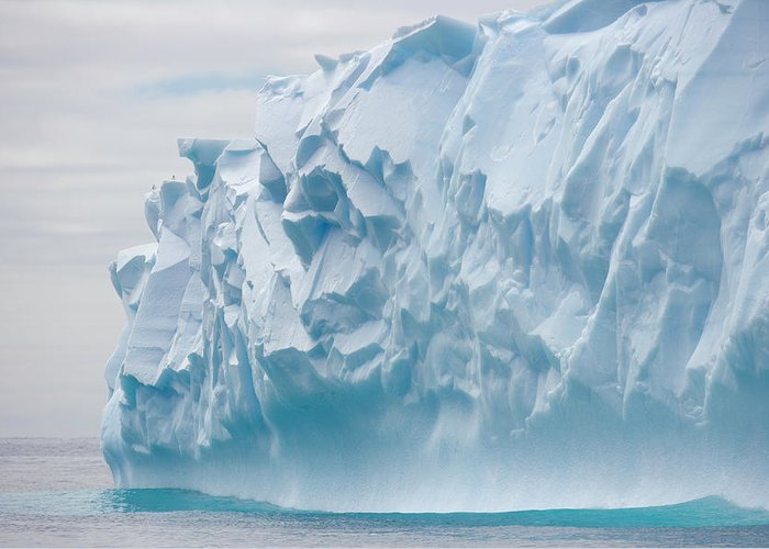 Scenics Greeting Card featuring the photograph Blue Iceberg Carved By Waves Floats In by Eastcott Momatiuk