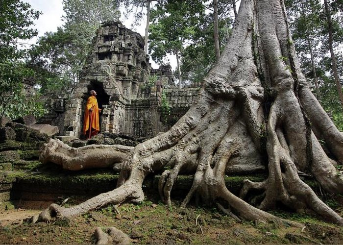 Orange Color Greeting Card featuring the photograph Buddhist Monk At Angkor Wat Temple by Timothy Allen