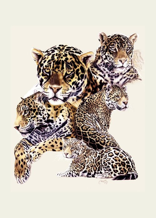 Jaguar Greeting Card featuring the drawing Burn by Barbara Keith