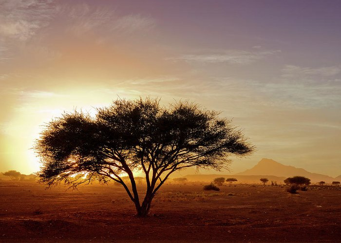 Tranquility Greeting Card featuring the photograph Burning Desert by Bernd Schunack