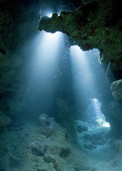 Underwater Greeting Card featuring the photograph Caribbean Sea, Cayman Islands, Grand by Paul Souders
