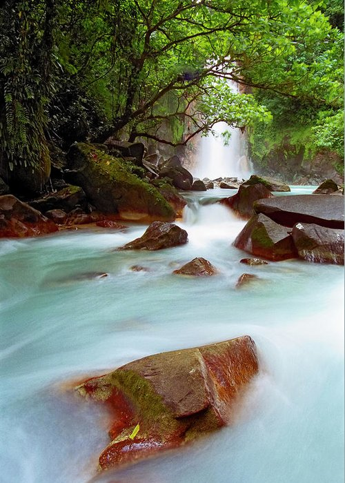 Tropical Rainforest Greeting Card featuring the photograph Celeste Falls, Costa Rica by Ogphoto