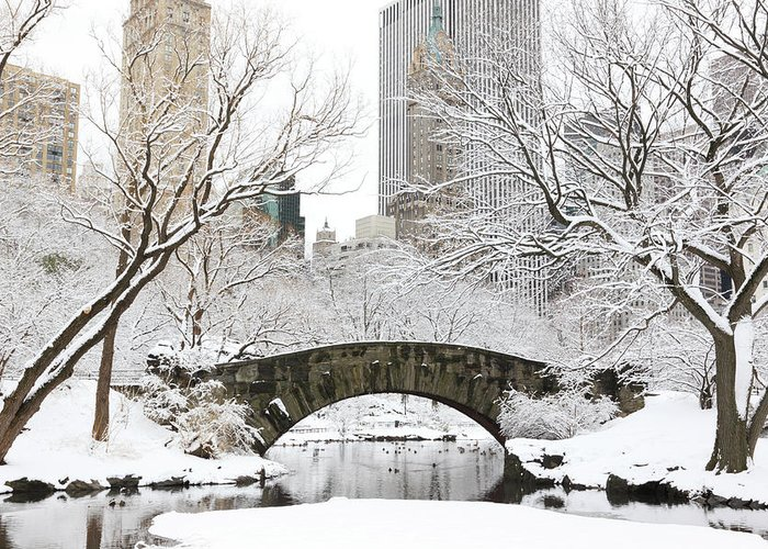 Snow Greeting Card featuring the photograph Central Park, New York by Veni