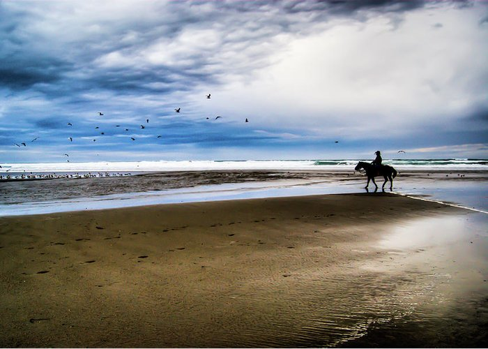 Horse Greeting Card featuring the photograph Cowboy Riding Horse On Beach by D. R. Busch