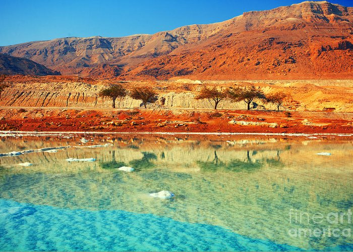 Beauty Greeting Card featuring the photograph Dead Sea by Vvvita