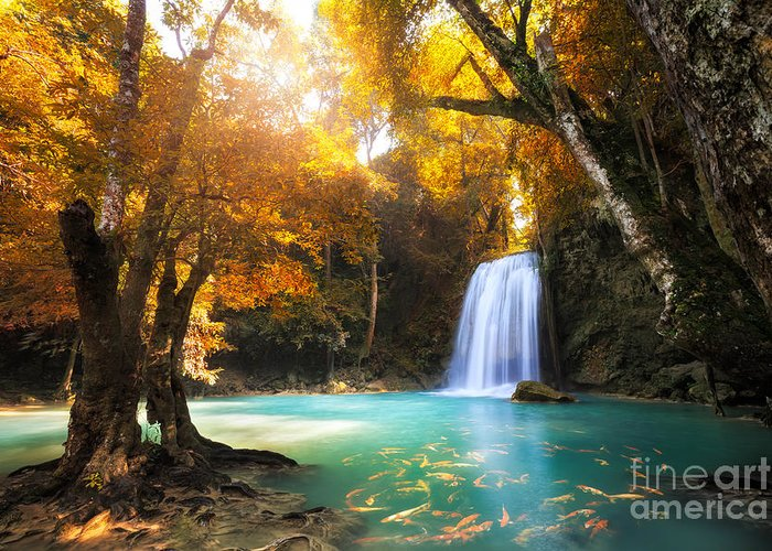 Koi Greeting Card featuring the photograph Deep Forest Waterfall In Kanchanaburi by Patrick Foto