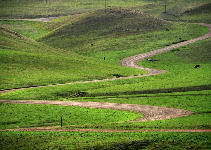 Tranquility Greeting Card featuring the photograph Dirt Road Through Green Hills by Mitch Diamond