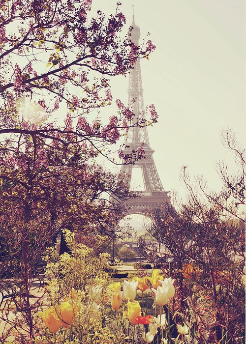 Treetop Greeting Card featuring the photograph Eiffel Tower, Paris by Liz Rusby