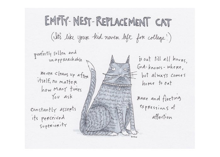 Captionless Greeting Card featuring the drawing Empty Nest Replacement Cat by Teresa Burns Parkhurst