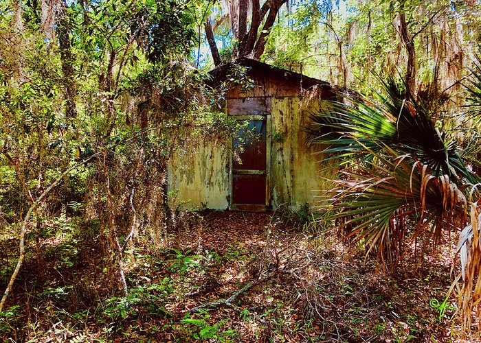 Florida Greeting Card featuring the photograph Fixr Upper by Arthur Fix