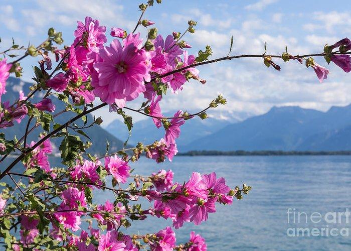 Lake Geneva Greeting Cards