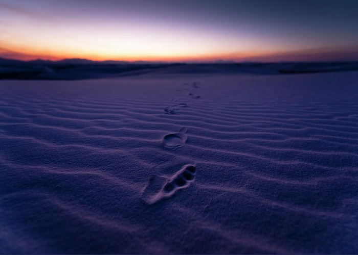 New Mexico Greeting Card featuring the photograph Footprint On Dunes by Son Gallery - Wilson Lee
