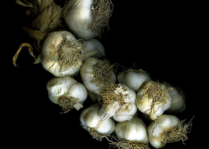 Black Background Greeting Card featuring the photograph French Garlic by Photograph By Magda Indigo