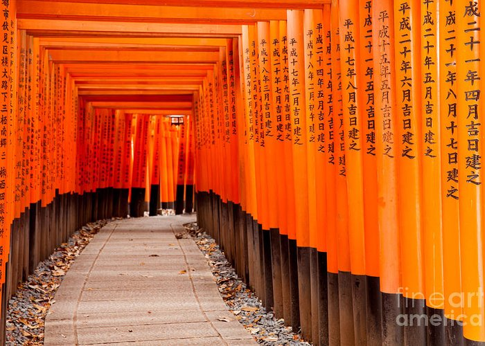 Forest Greeting Card featuring the photograph Fushimi Inari Taisha Shrine In Kyoto by Pigprox
