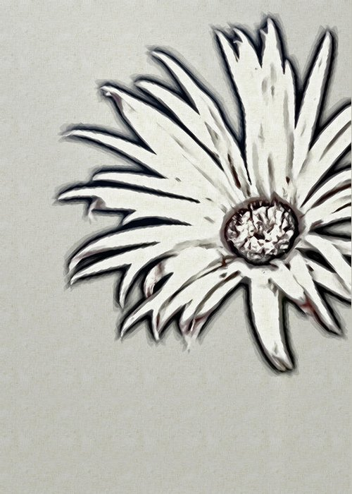 Rockville Greeting Card featuring the photograph Gerbera Flower Shape by Maria Mosolova