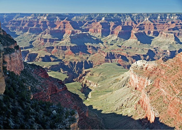 Scenics Greeting Card featuring the photograph Grand Canyon Beauty by Mitch Diamond
