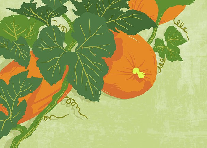 Part Of A Series Greeting Card featuring the digital art Graphic Illustration Of Pumpkins by Don Bishop