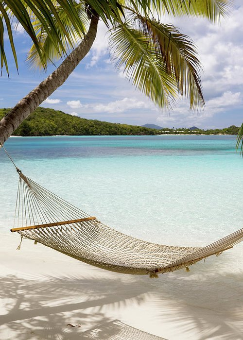 Water's Edge Greeting Card featuring the photograph Hammock Hung On Palm Trees On A by Cdwheatley