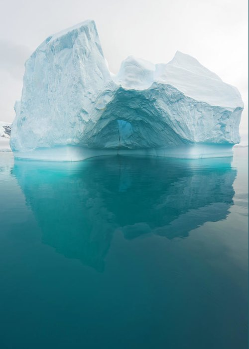 Iceberg Greeting Card featuring the photograph Iceberg And Reflections, Antarctic by Eastcott Momatiuk