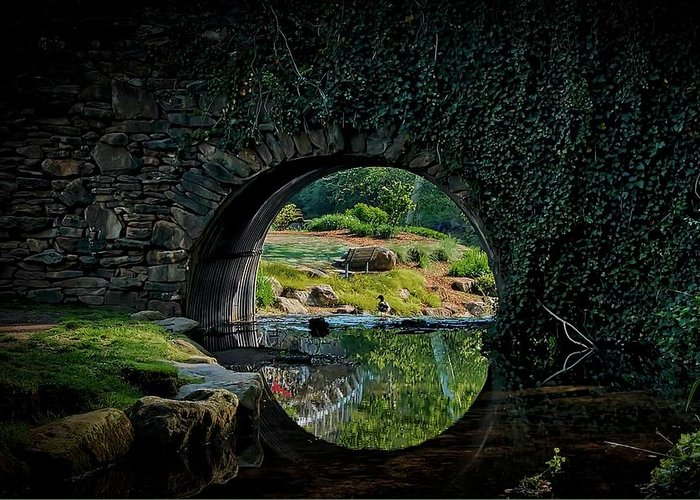 Bridge Greeting Card featuring the photograph In the Middle of A Reflection by Zayne Diamond Photographic