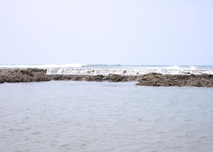 Scenics Greeting Card featuring the photograph Indian Ocean Reef by Magnus Franklin
