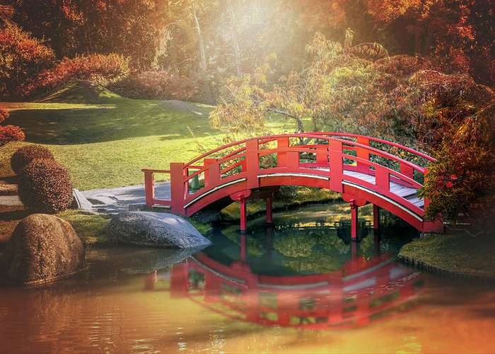 Toulouse Greeting Card featuring the photograph Japanese Garden And Bridge Toulouse France by Carol Japp