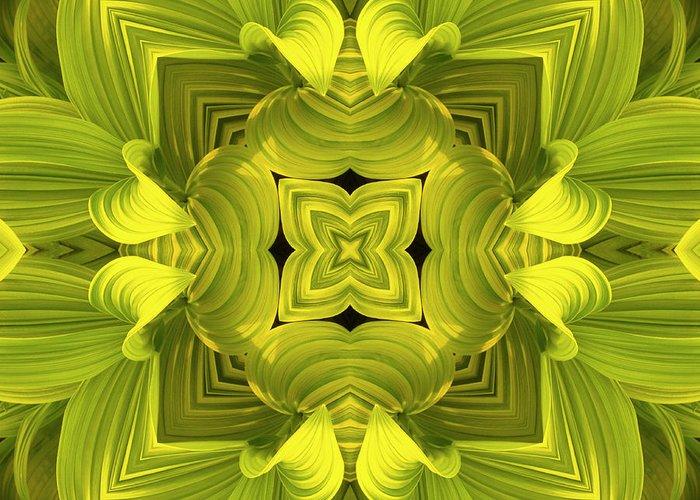 Mandala Greeting Card featuring the photograph Leafy Mandala by Steve Satushek