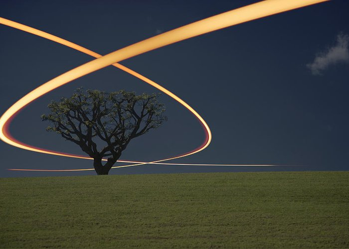 Scenics Greeting Card featuring the photograph Light Trails Around Tree by Paul Taylor