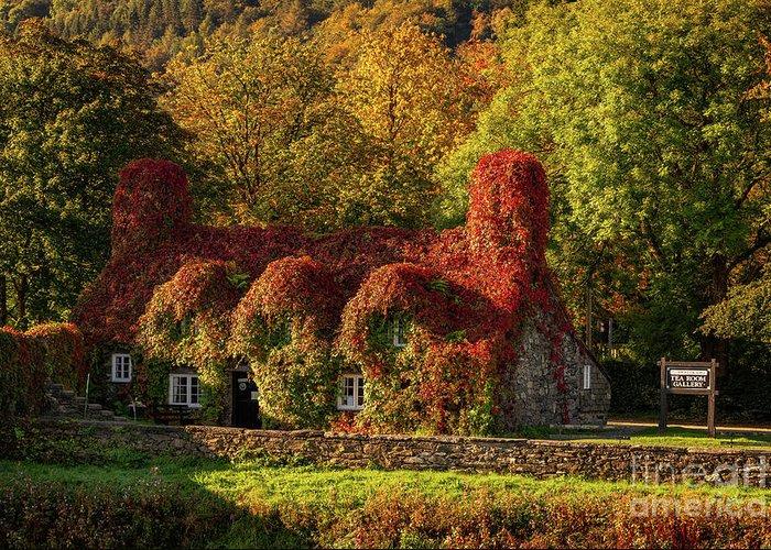 Tu Hwnt I'r Bont Greeting Card featuring the photograph Llanrwst Tea Room Autumn by Adrian Evans