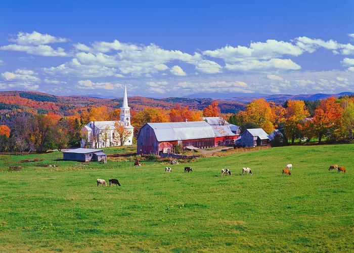Scenics Greeting Card featuring the photograph Lush Autumn Countryside In Vermont With by Ron thomas