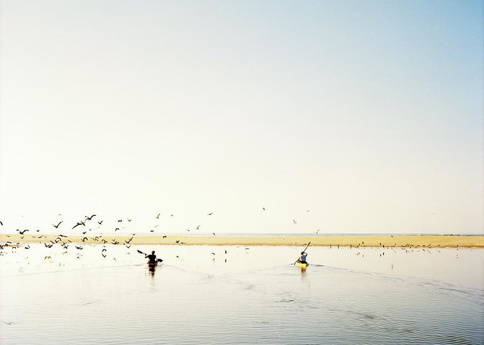 People Greeting Card featuring the photograph Men Paddling Kayaks To The Beach by Julien Capmeil