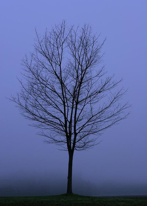 November Greeting Card featuring the photograph Moody Blue November Day by Zennie