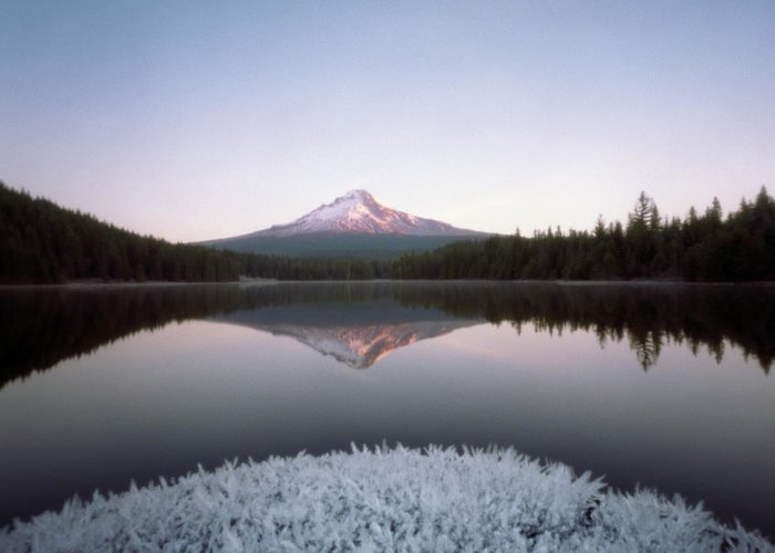 Scenics Greeting Card featuring the photograph Mt. Hood Lit By Sunrise by Wendi Andrews
