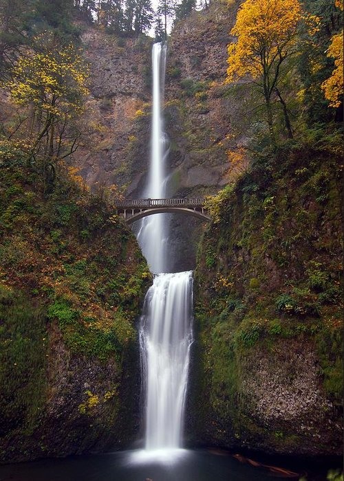 Scenics Greeting Card featuring the photograph Multnomah Falls by Ted Ducker Photography