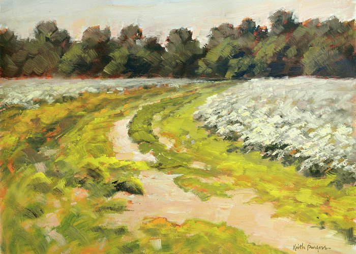 Impressionism Greeting Card featuring the painting October Cotton Fields by Keith Burgess