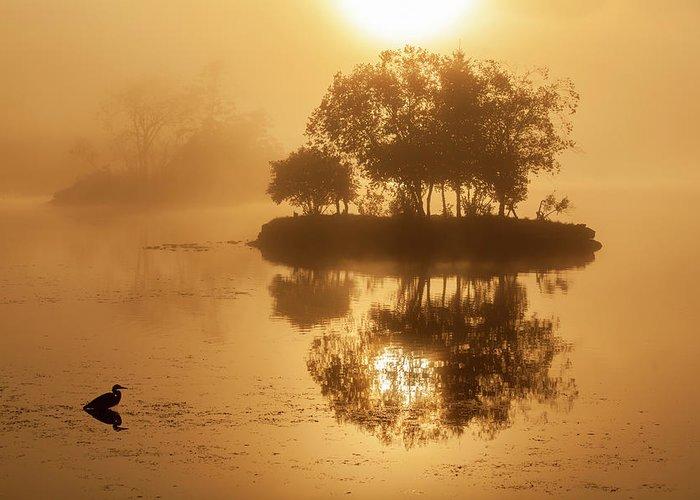 On Golden Pond Greeting Card featuring the photograph On Golden Pond Sunrise Lake Winnipesaukee by Trevor Slauenwhite