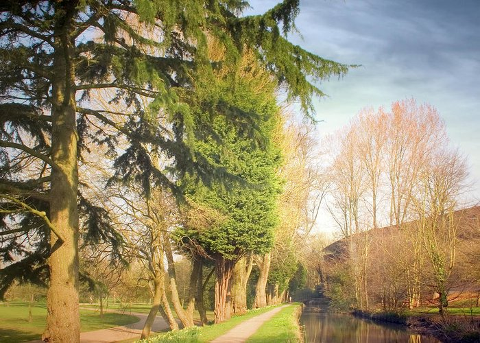 Tranquility Greeting Card featuring the photograph Path Besides Canal In Bute Park by Christiana Stawski