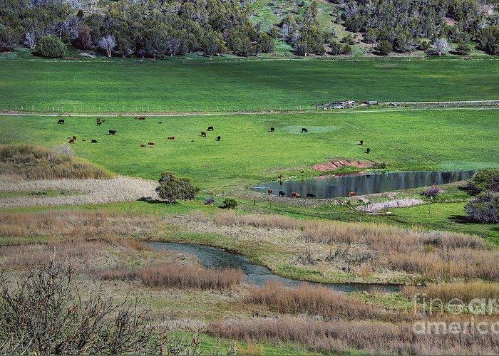 Peaceful Farm In Durango Greeting Card featuring the photograph Peaceful Farm In Durango by Mae Wertz