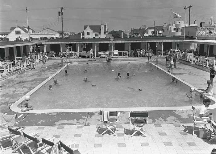Rectangle Greeting Card featuring the photograph People Swimming In Pool, B&w, Elevated by George Marks