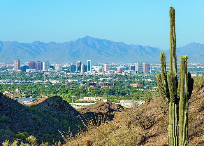 Saguaro Cactus Greeting Card featuring the photograph Phoenix Skyline Framed By Saguaro by Dszc
