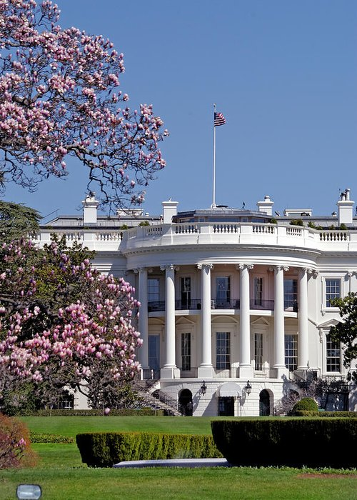 Democracy Greeting Card featuring the photograph Picture Of The White House During by Dhuss
