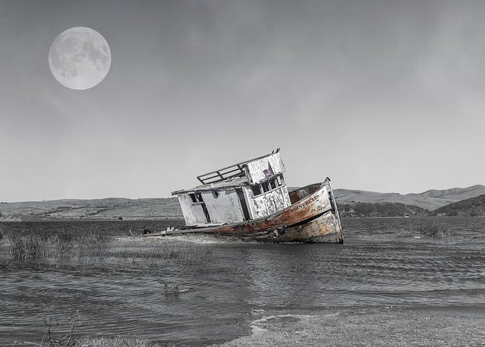 Shipwreck Greeting Card featuring the photograph Point Reyes California Shipwreck by Betsy Knapp