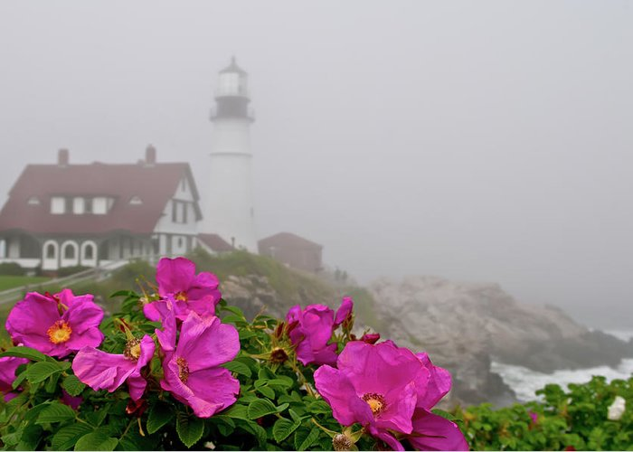 Built Structure Greeting Card featuring the photograph Portland Headlight With Rosa Rugosa And by Www.cfwphotography.com