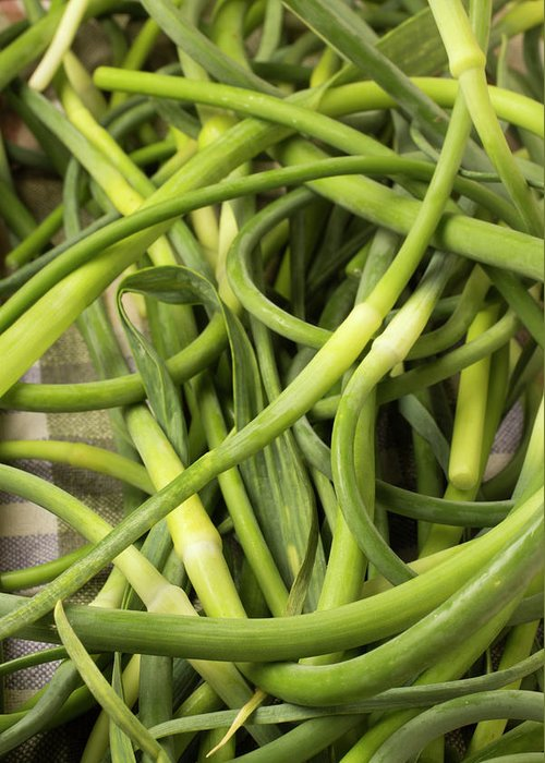 Season Greeting Card featuring the photograph Raw Garlic Scapes by Brian Yarvin