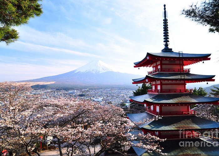 Cherry Greeting Card featuring the photograph Red Pagoda With Mt. Fuji As The by Sanupot