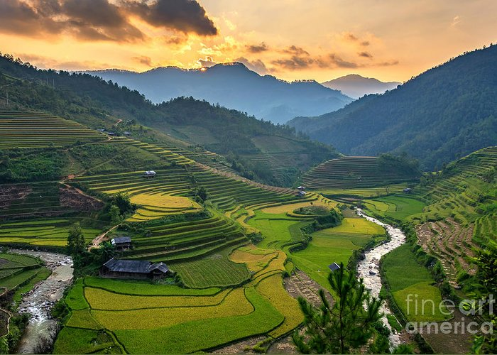 Sunshine Greeting Card featuring the photograph Rice Field On Terraces Panoramic by Cw Pix