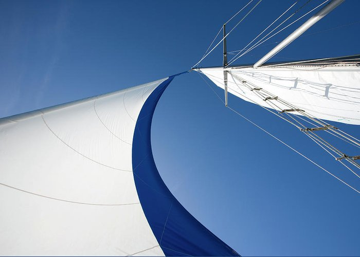 Curve Greeting Card featuring the photograph Sailing by Tammy616