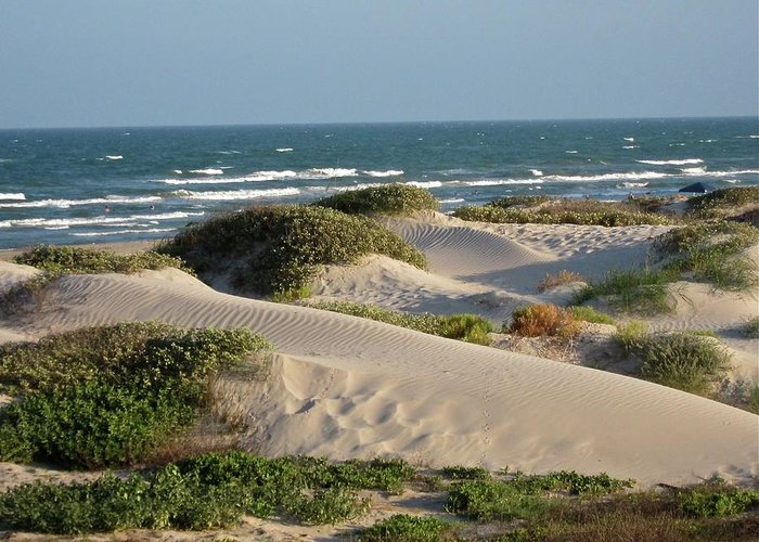 Tranquility Greeting Card featuring the photograph Sand Dunes by Joe M. O'connell